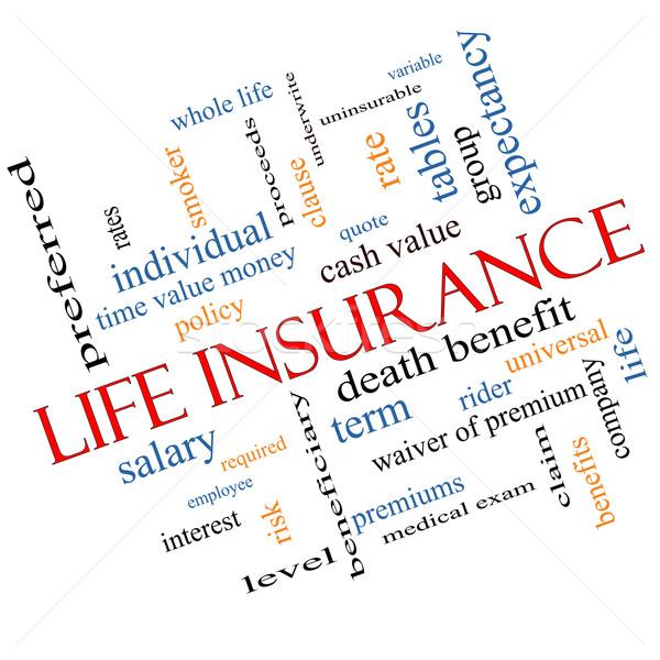 Assicurazione sulla vita word cloud tutto vita citare Foto d'archivio © mybaitshop