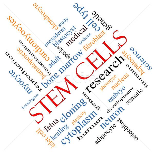 Stelo word cloud ricerca umani medici Foto d'archivio © mybaitshop