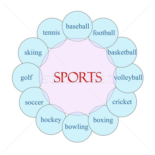 Sport Rundschreiben Wort Diagramm rosa blau Stock foto © mybaitshop