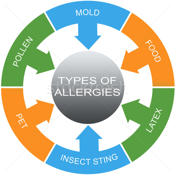 Types of Allergies Word Circles Concept Stock photo © mybaitshop