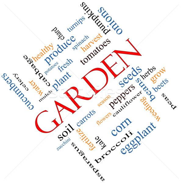 Garden Word Cloud Concept Angled Stock photo © mybaitshop