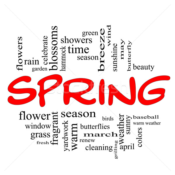 Spring Word Cloud Concept in Red Caps Stock photo © mybaitshop
