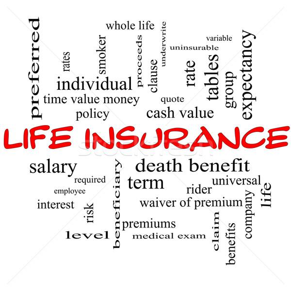 Assicurazione sulla vita word cloud lavagna tutto vita Foto d'archivio © mybaitshop