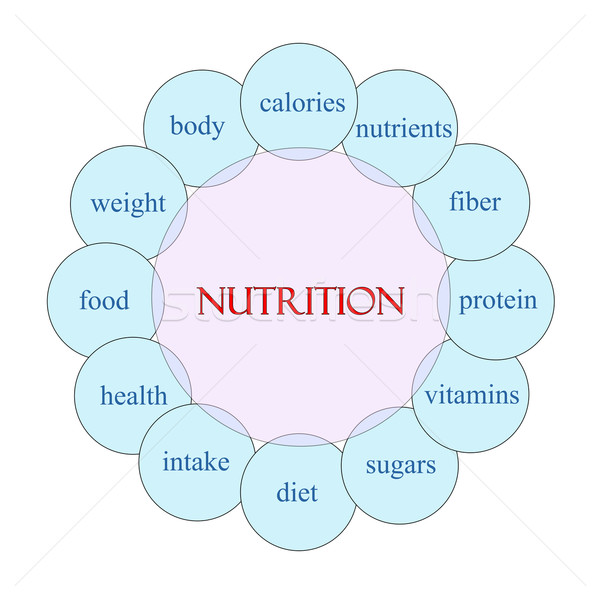 Nutrizione parola diagramma rosa blu Foto d'archivio © mybaitshop