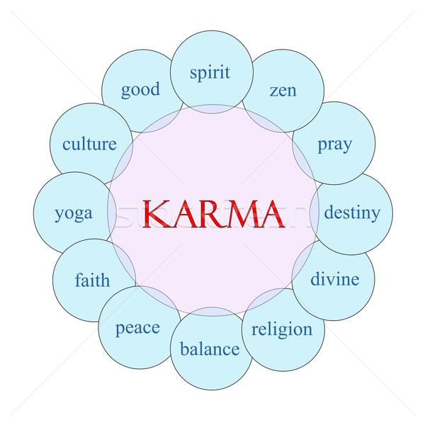 Karma körkörös szó diagram rózsaszín kék Stock fotó © mybaitshop