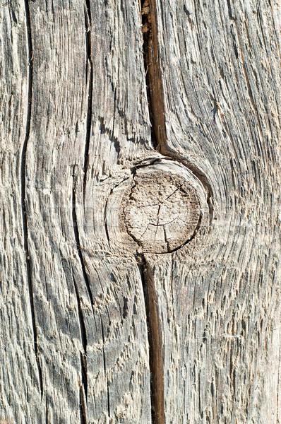 Dal yüzey tahta ağaç Bina Stok fotoğraf © mycola