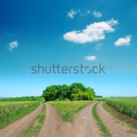 crossing of two rural road and deep blue sky Stock photo © mycola