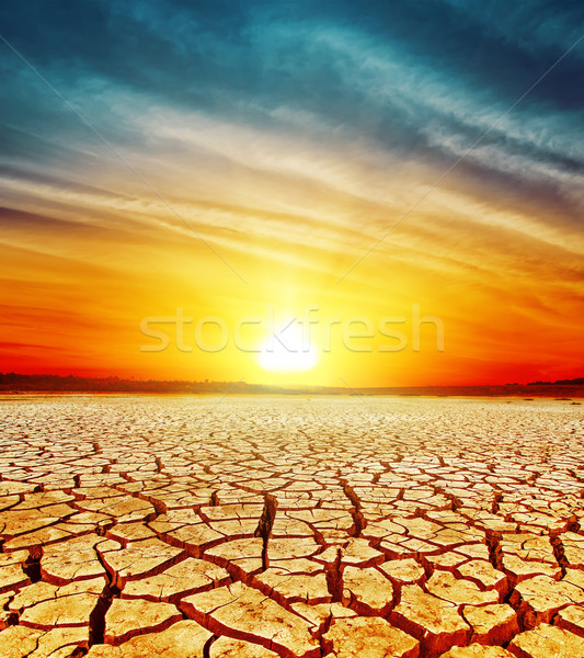 golden sunset over cracked desert Stock photo © mycola