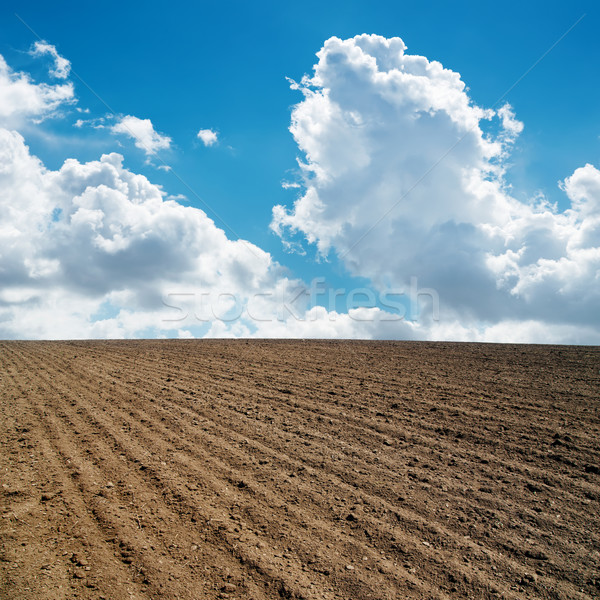 clouds in blue sky and plowed field Stock photo © mycola