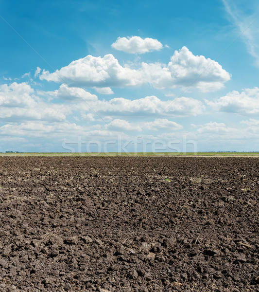 black arable field after harvesting and blue sky Stock photo © mycola