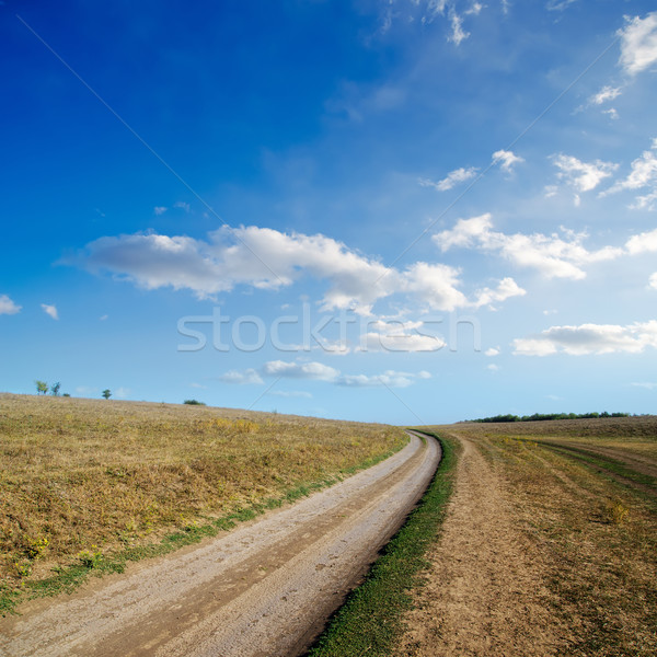 Rural route horizon herbe soleil paysage Photo stock © mycola