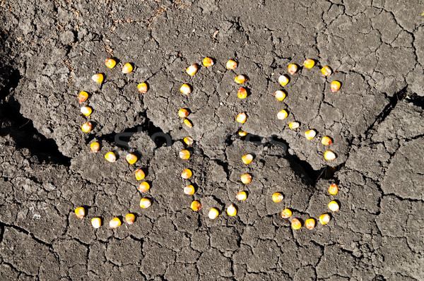 word SOS from grains of corn over cracked earth Stock photo © mycola