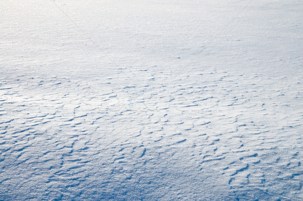 snowfield as good winter background Stock photo © mycola