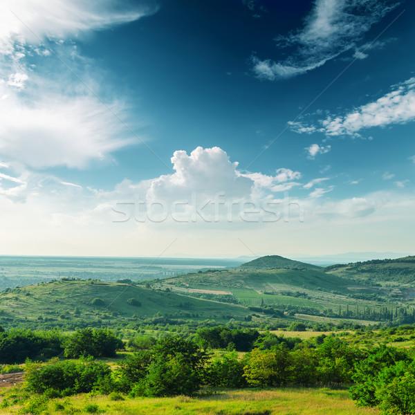 Bella verde montagna panorama foresta estate Foto d'archivio © mycola