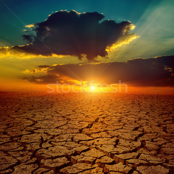 dramatic sunset over drought earth Stock photo © mycola