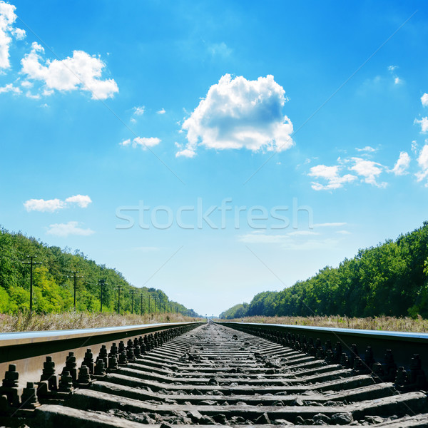 railroad close up to horizon and cloudy sky Stock photo © mycola