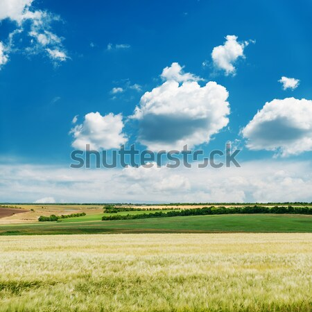 view of rural locality with clouds in the background Stock photo © mycola