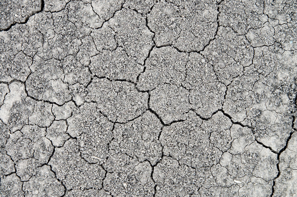 dried-up earth with cracks Stock photo © mycola