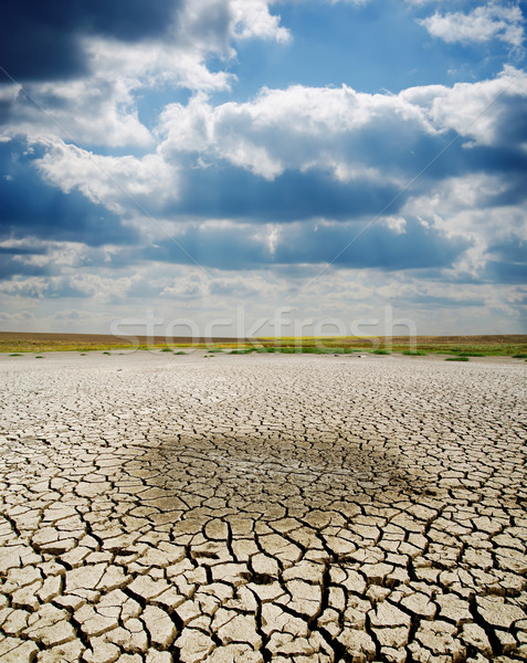 cracked earth under dramatic sky Stock photo © mycola
