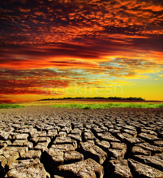 red dramatic sunset over dry cracked earth Stock photo © mycola