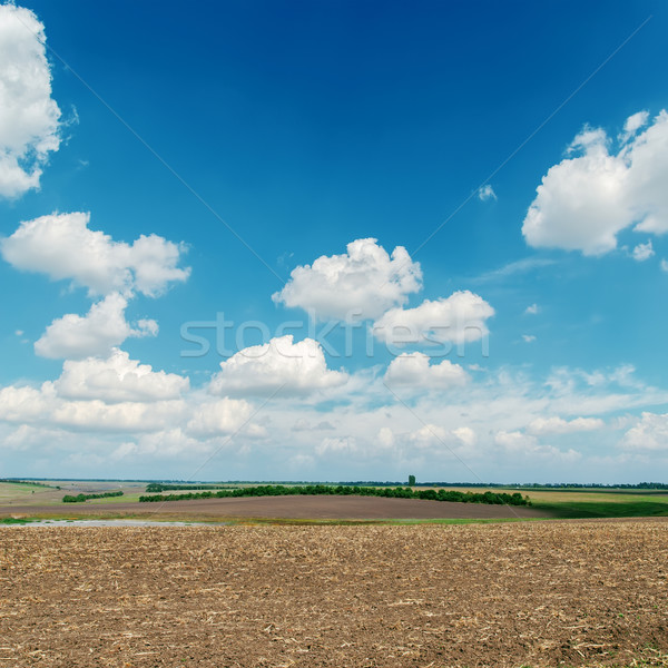 black plowed field under blue sky with white clouds Stock photo © mycola