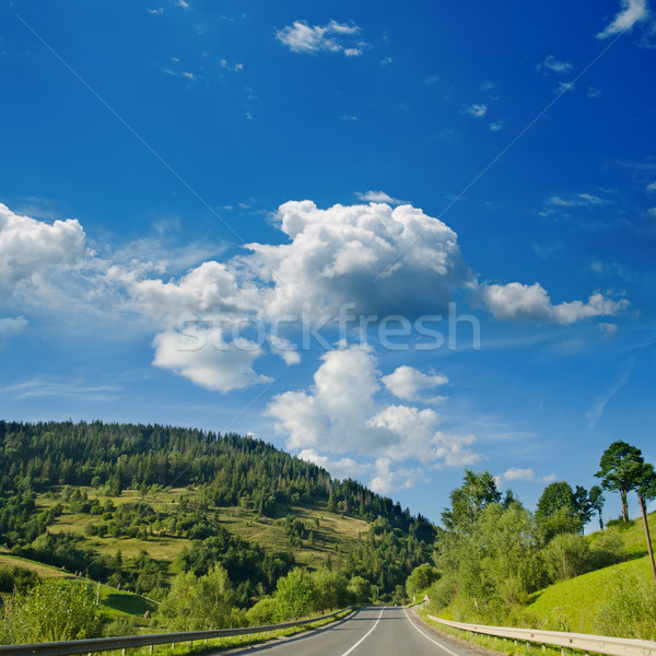 road in mountain. Ukrainian Carpathians Stock photo © mycola
