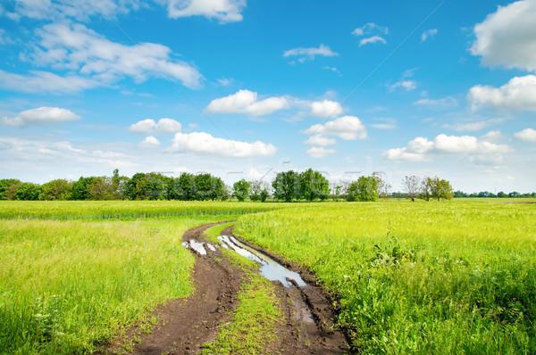 Vidéki út pocsolya zöld mező víz Stock fotó © mycola