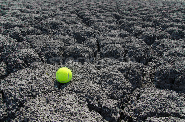tennis ball on cracked land Stock photo © mycola