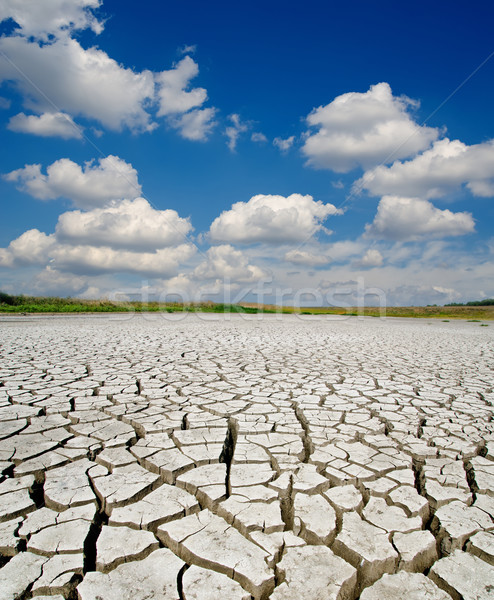 drought land under dramatic sky Stock photo © mycola