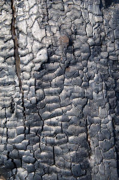 Textura de madeira fogo natureza escuro padrão quente Foto stock © mycola