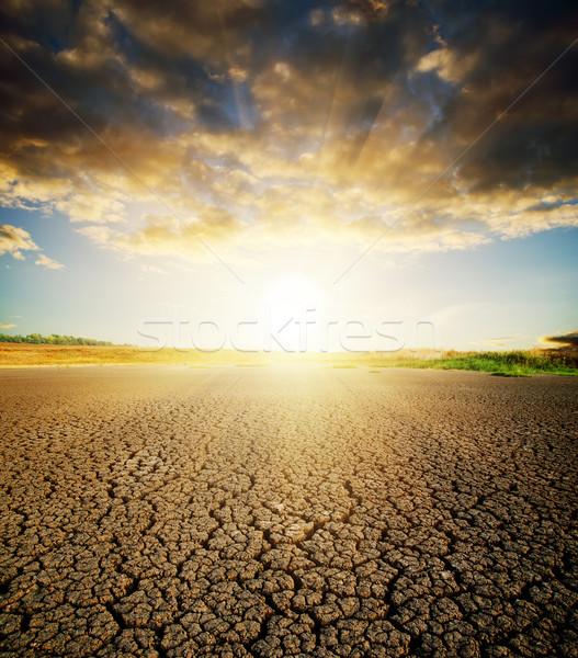 Secar agrietado suelo tierra sol puesta de sol Foto stock © mycola