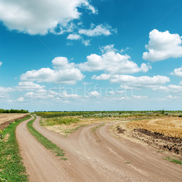 two dirty roads under blue cloudy sky Stock photo © mycola