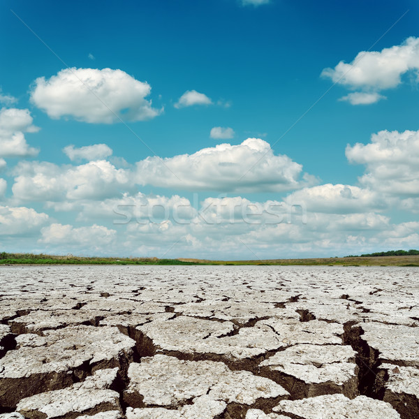 drought earth and dramatic sky with clouds Stock photo © mycola