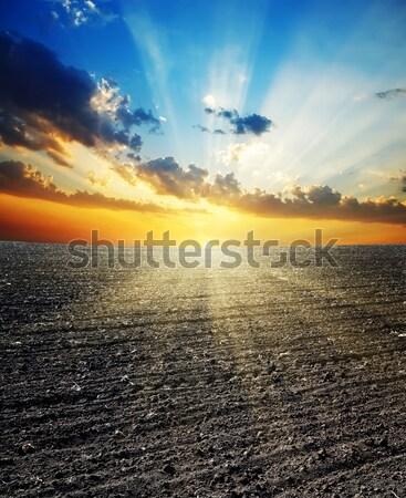 Fantastique coucher du soleil asphalte route soleil lumière Photo stock © mycola