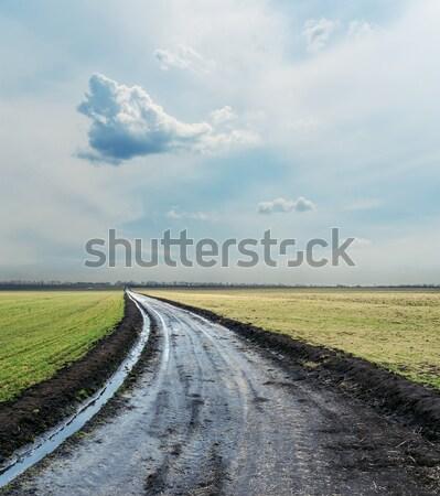 Rurale strada nero campo cielo terra Foto d'archivio © mycola