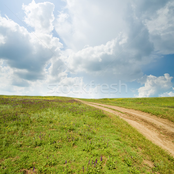 rural road in grass Stock photo © mycola
