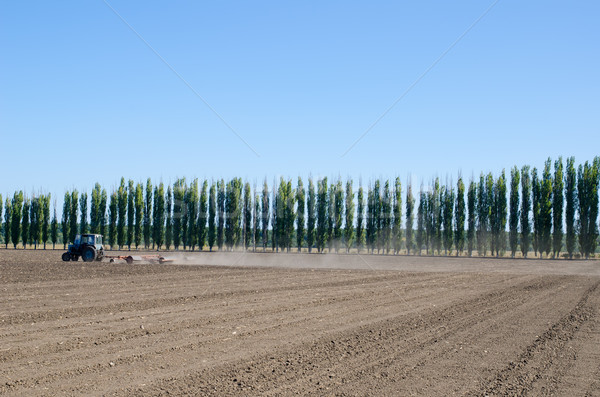 agriculture tractor on black ploughed field under blue sky Stock photo © mycola