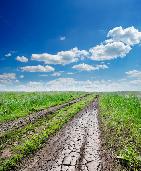 cracked rural road in green grass Stock photo © mycola