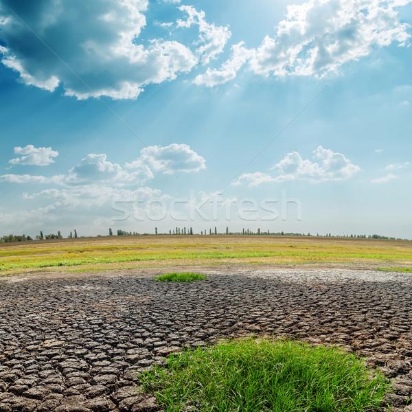 Forró nap aszály föld természet sivatag Stock fotó © mycola
