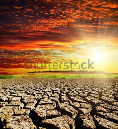драматический закат засуха землю природы свет Сток-фото © mycola