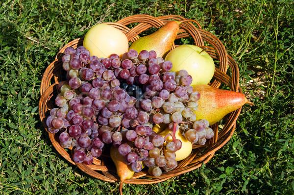 Naturaleza muerta vid manzanas peras manzana frutas Foto stock © mycola