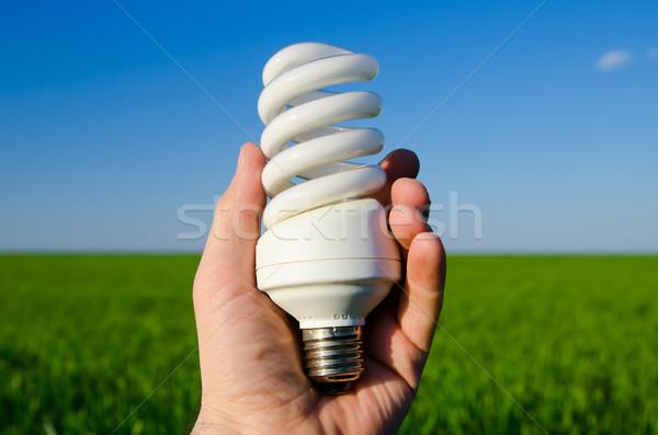 Energie besparing lamp hand business licht Stockfoto © mycola