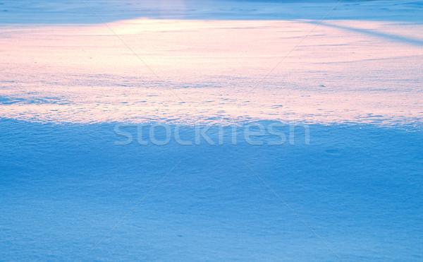 winter horizon Stock photo © mycola