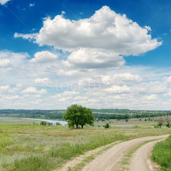 Kirli yol yeşil çayır bulutlar ağaç Stok fotoğraf © mycola
