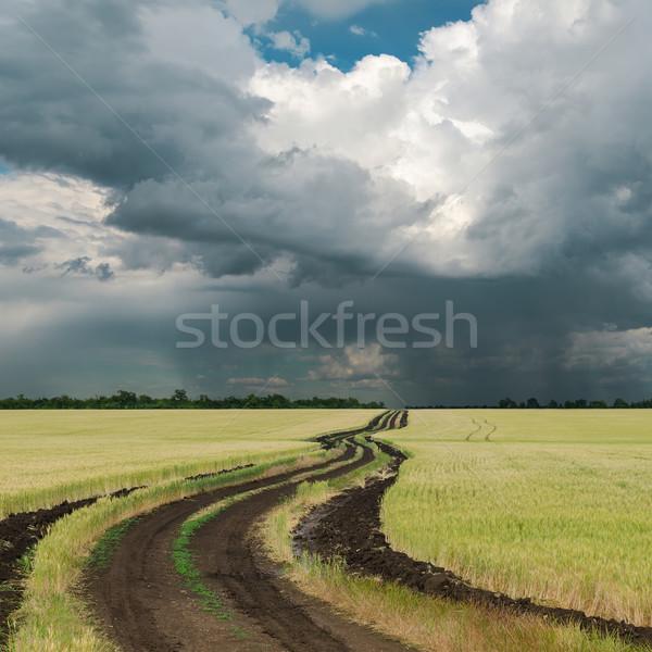 雨の 雲 フィールド 道路 春 美 ストックフォト © mycola