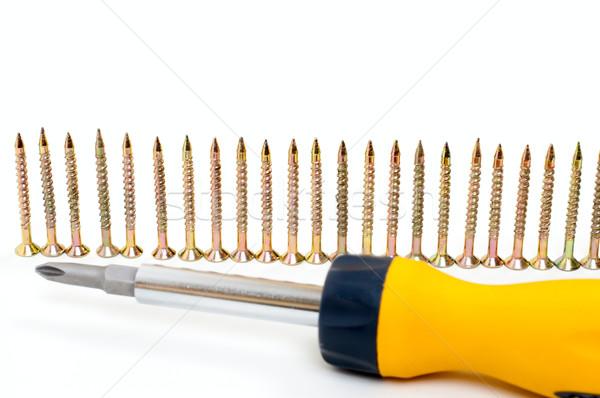 cruciform screwdriver and row of screw Stock photo © mycola