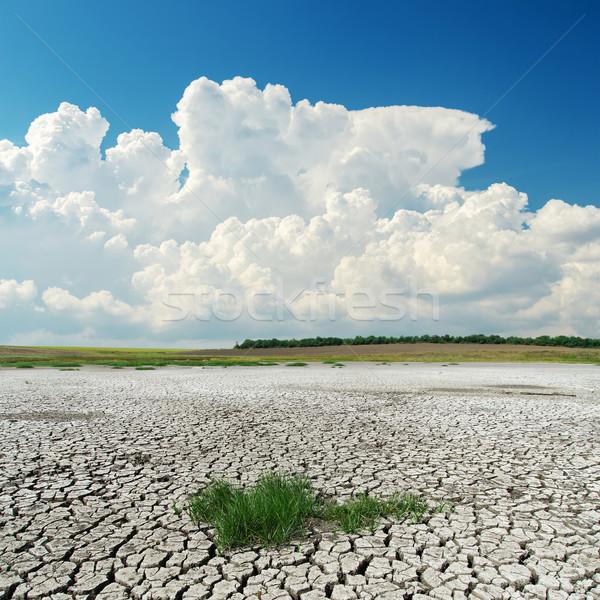 Branco nuvens rachado deserto textura sol Foto stock © mycola