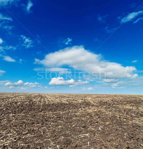 Fekete megművelt mező kék ég természet háttér Stock fotó © mycola