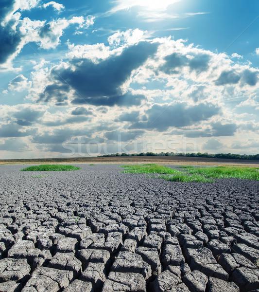 Siccità terra caldo sole texture panorama Foto d'archivio © mycola