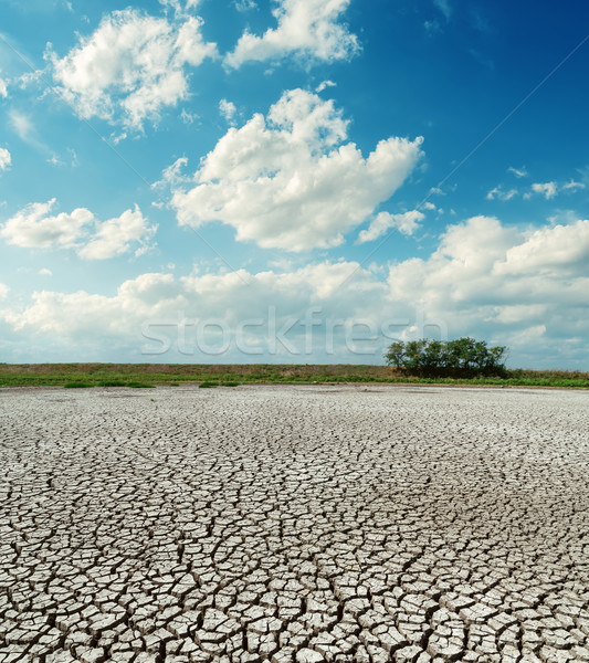 cracked desert under low clouds Stock photo © mycola